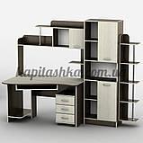 Стол компьютерный Тиса-29, фото 2