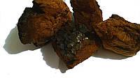 Чага гриб (Fungus betulinus), 100 грамм