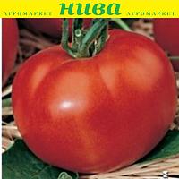 Сім-Сім F1 насіння томату індет. рожевого Erste Zaden 1 000 насінин