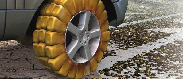 Насіння кукурудзи НК Термо (Syngenta) - 1 п. о. , фото 2