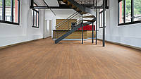 Rooms Penthouse R 1202 Brown Oak (Дуб коричневый)