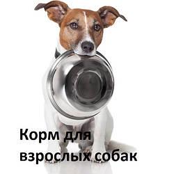 Корм для взрослых собак