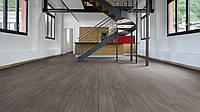 Rooms Penthouse R 1204 Anthracite Oak (Дуб антрацит)