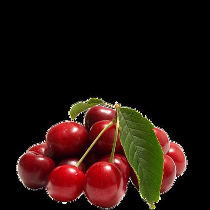 Cherry Extract 10ml, фото 2