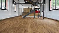 Rooms Penthouse R 1208 Bronze Oak (Дуб бронзовый)