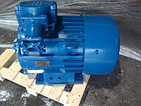 Электродвигатель ВАО 82-6 40 кВт 1000 об/мин (40/1000)