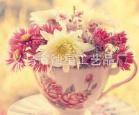 """Алмазная вышивка """"Чашечка с цветами"""" (Набор алмазной живописи)"""