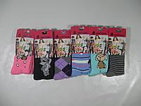 Колготы  для девочек махровые -термо оптом,softsail размеры  лет  86/98-158/164,softsail арт  2801, фото 1