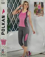 Комплект для фитнеса 2в1 Polkan