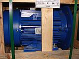 Електродвигун АИР225М4 -55кВт/ 1500 об/хв, фото 5