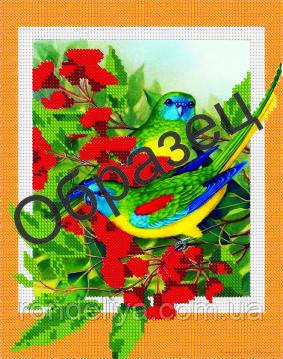 Схема для вышивки бисером « Попугаи в цветах»