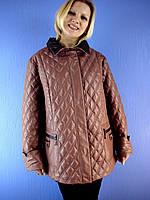 Куртка женская весенняя DEIFY 1727 (размер 5XL-9XL) Deify, Symonder, Peercat, Decently, Kapre, Covily, Mishele