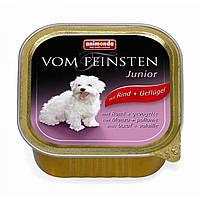 Консерва для щенков с говядиной и птицей Animonda Vom Feinsten Junior mit Rind and Geflugen