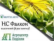 Семена подсолнечникаНС ФАЛКОН (110-115 дн.) НЕРТУС Фракция Экстра
