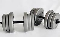 Гантели 2х20 кг Наборные WCG Grey, фото 1