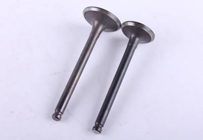 Клапаны (пара) - Актив/Дельта/Альфа - Premium, фото 2