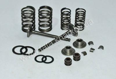 Клапаны комплект (пружины, сухари, сальники, тарелки) - Актив/Дельта/Альфа, фото 2