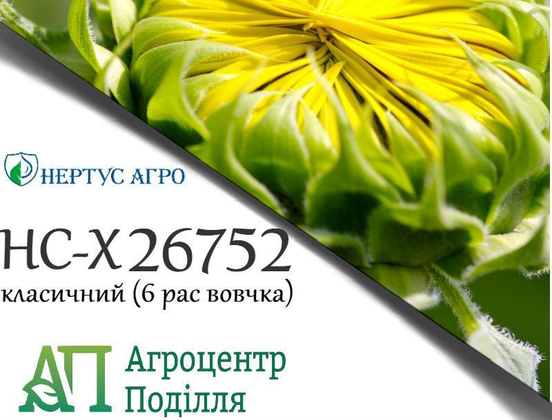 Семена подсолнечника НС-Х 26752 (102-105 дн.) Фракция Экстра