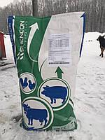 Энергетически протеиновый витаминно-минеральный концентрат для высокопроизводительных коров SHENCON мешок 25 к