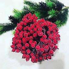 Калина в сахаре.Декоративная ягода.(40 шт), фото 3