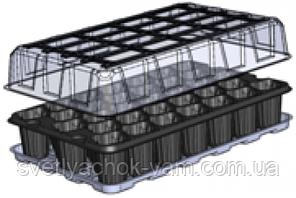 Парничек на 33 ячейки многоразовый пластиковый с поддоном и прозрачной крышкой ячейка 52х52х65 - 278х425