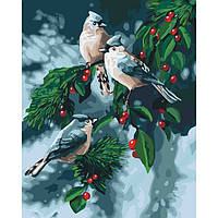 Картина по номерам Птицы на ветке