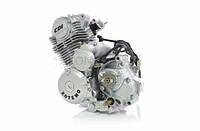 Двигатель Minsk-Viper CB 125cc (JP156FMI-5) ZOTEMO