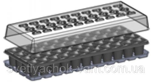 ПАРНИЧЕК на 44 ячейки многоразовый пластиковый с поддоном и прозрачной крышкой 40х40х55