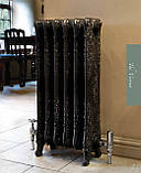 Радиатор чугунный дизайнерский CARRON Verona 800, фото 2