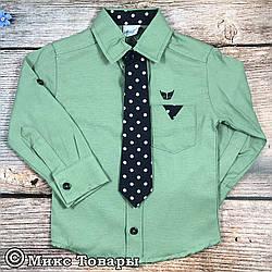 Детская рубашка для мальчика Размер: 1,2,3,4,5 лет (7596)