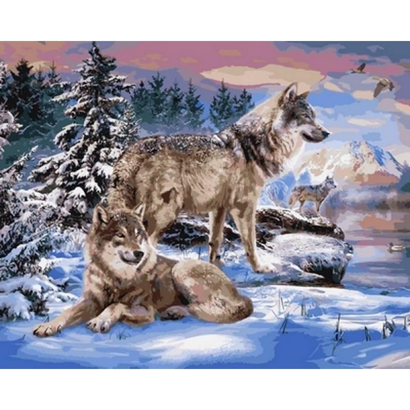 """Картина по номерам 50х40см Babylone Turbo """"Волки"""""""