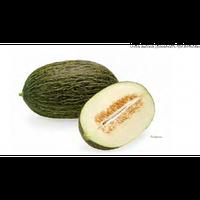 Дыня Реймил F1 (Reymiel RZ), 100 семян (тип Пиел де Сапо, плод 4-5 кг)