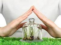 Хімічний захист рослин – варто чи ні?