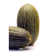 Дыня Дукрал F1 (Ducral RZ), 100 семян (тип Амарилло / желтая Канарское, плод 2,5-3,0 кг )