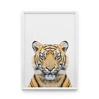 Постер на стіну Тигра в кадрі