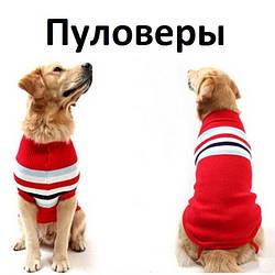 Пуловеры для собак