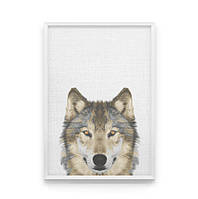 Постер на стену Волк в кадре