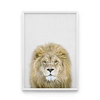 Постер на стену Гордый лев в кадре