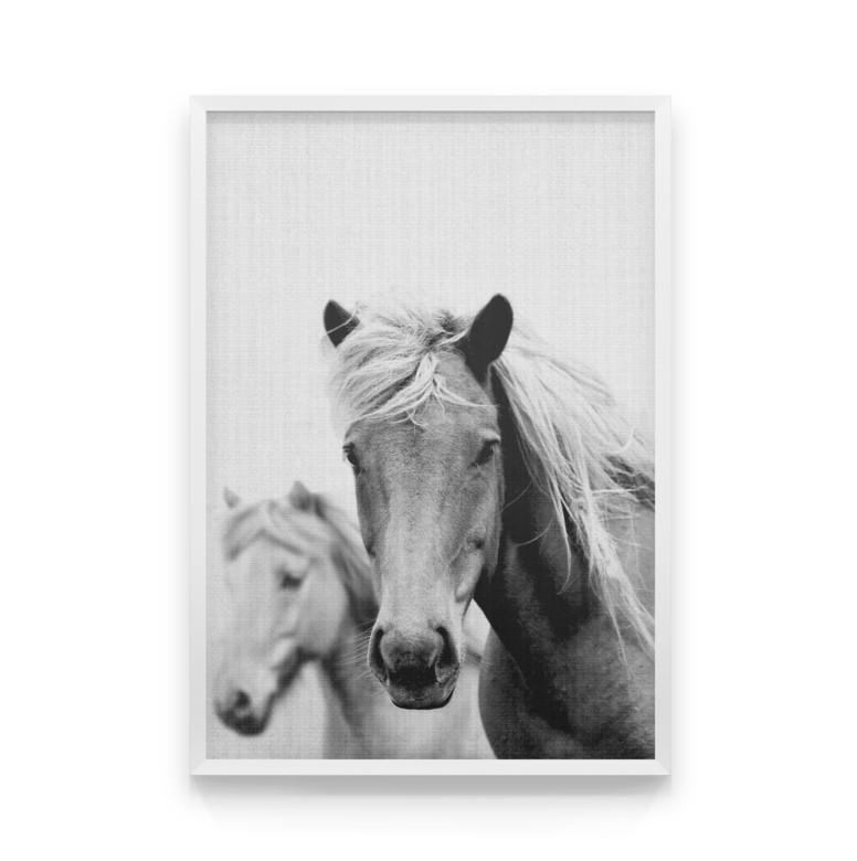 Постер на стену ЛОШАДИ с прекрасными преданными животными