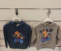 Толстовки для мальчиков оптом, Disney. размеры 2-6 лет арт.991-333