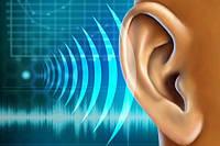 Calminax (Калминакс) -  для улучшения качества слуха. Фирменный магазин. Цена производителя.