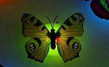 Светодиодные бабочки 1шт. - цвета разные, уточняйте, пластик