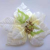 Пуансетия цветок 20 см кремовый