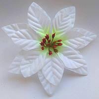 Пуансетия цветок 13 см белый