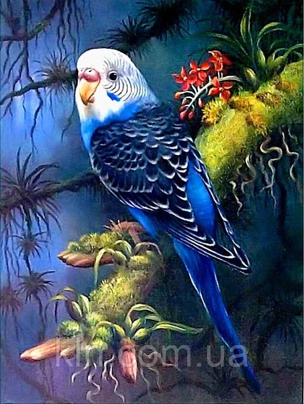 Алмазная вышивка Мой волнистый попугай 30 х 40 см (арт. FS812) на подарок