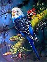 Алмазная вышивка Мой волнистый попугай 30 х 40 см (арт. FS812) на подарок, фото 1