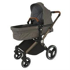 Детская коляска 2 в 1 Welldon (серый) WD007-2