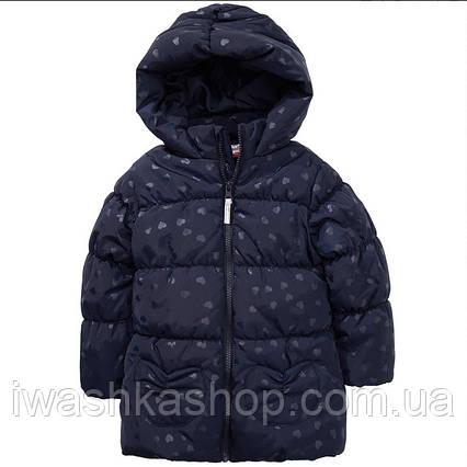 Зимняя темно -синяя куртка на девочку 3 - 4 года, р. 104, Topolino