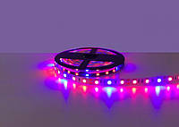 Светодиодная лента LED 12V, SMD5050, 60 д/м, Фитолента (1 к 3 диоди)