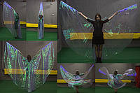 Крылья из органзы и кристаллона